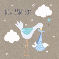 New Baby Boy Mini Card