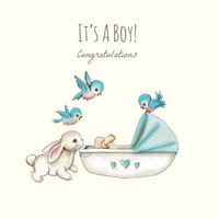 It's A Boy Congratulations